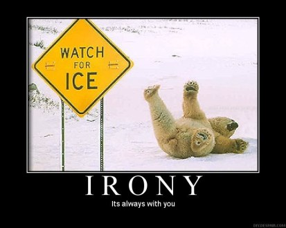 Irony - polar bear